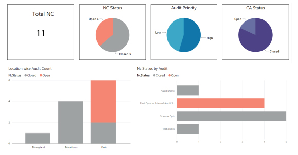 Real-Time Auditing - Intuitive Dashboard