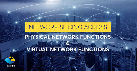 Physical Network Functions and Virtual Network Functions